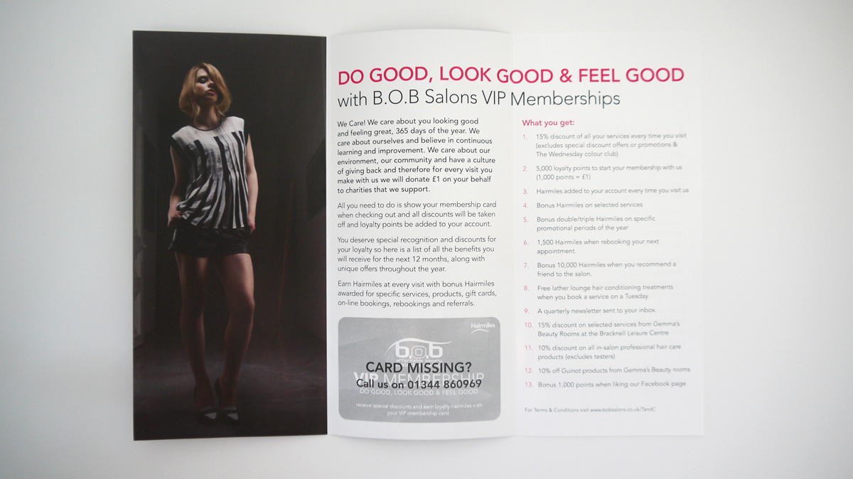 The open spread of the 6 page DL leaflet