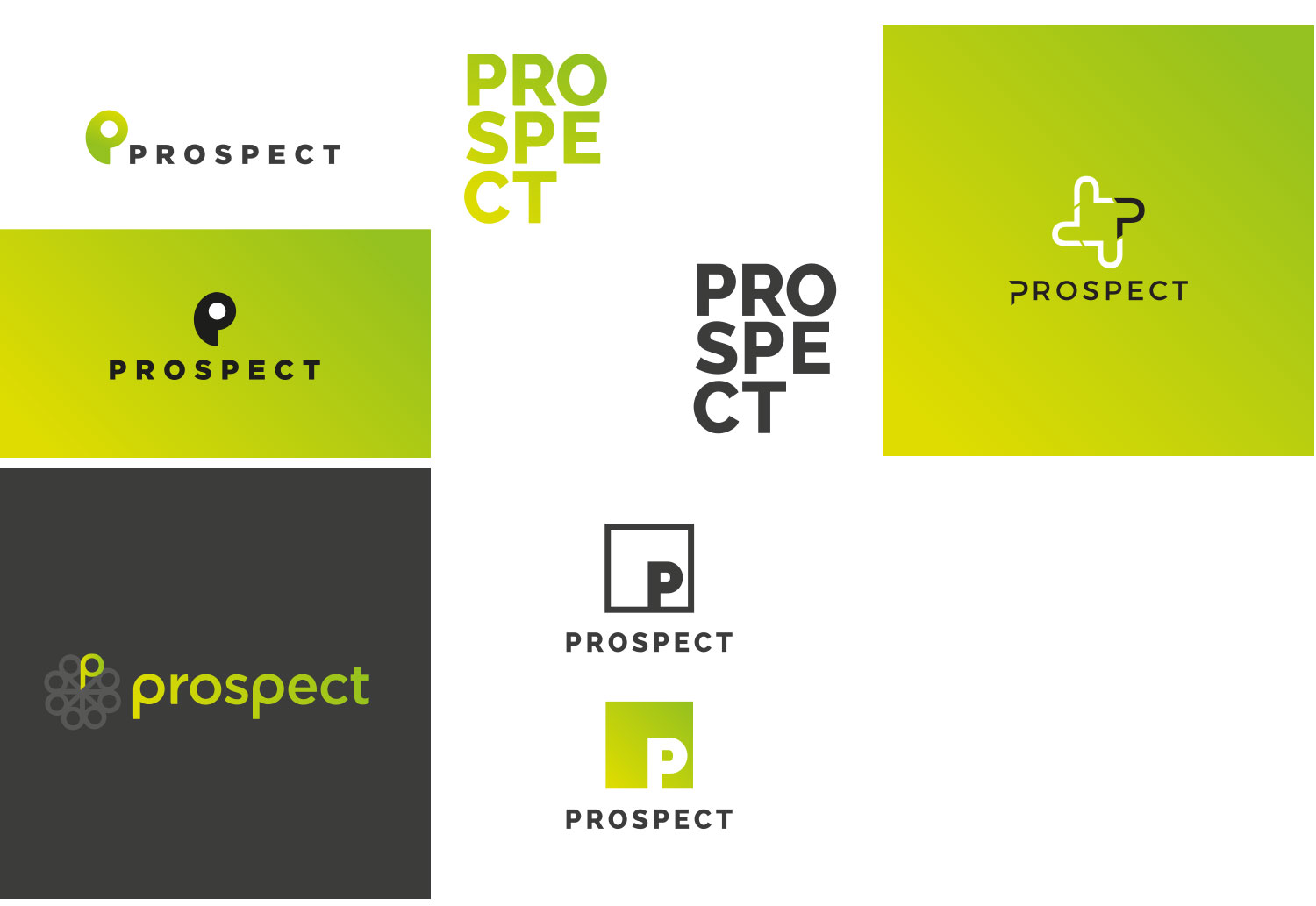 Refining the clients preferred logo concepts further