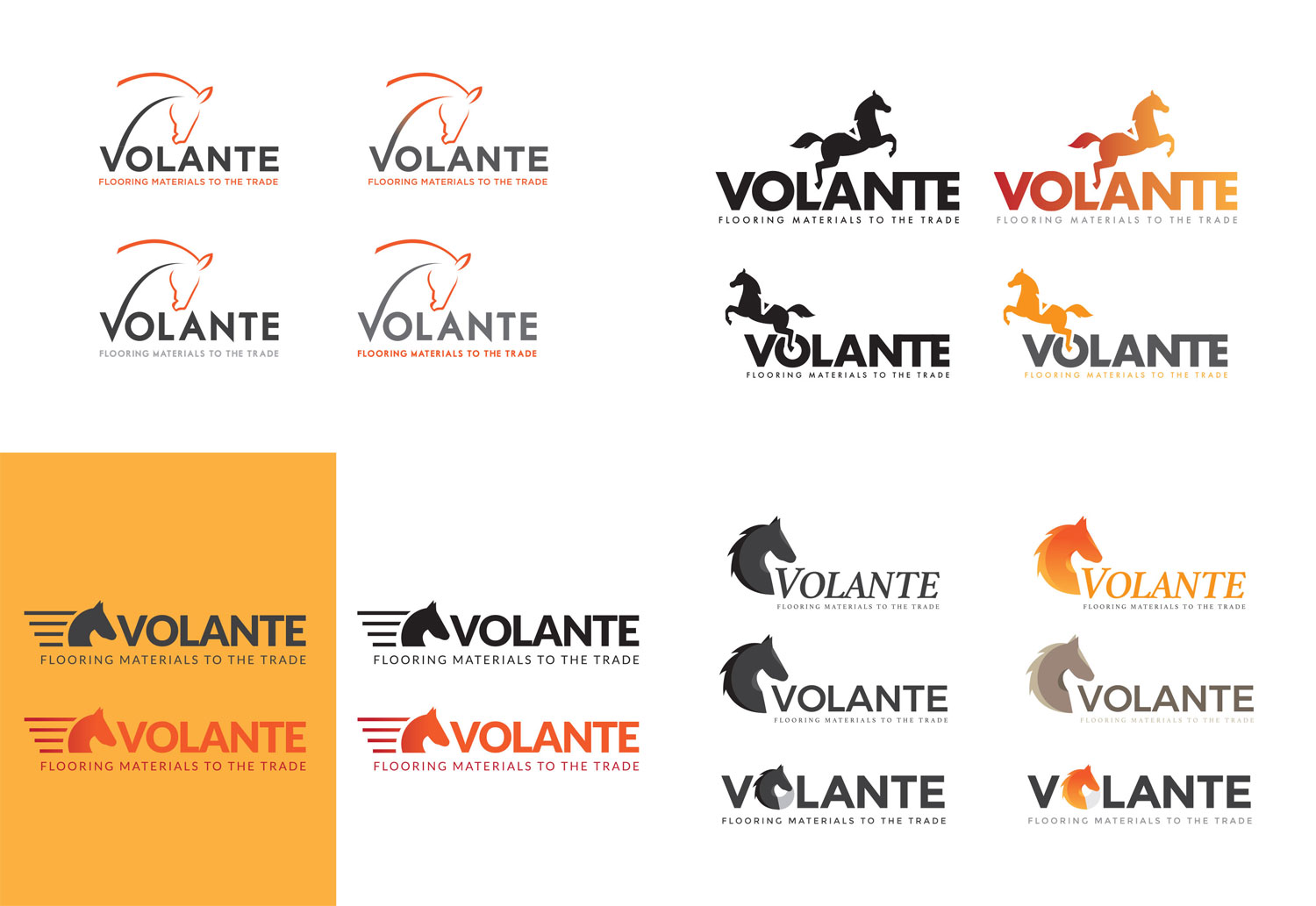 Volante Logo Concepts for Corporate Rebrand