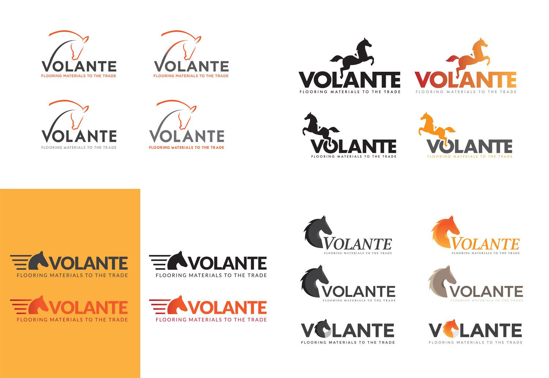 Volante Logo Concepts