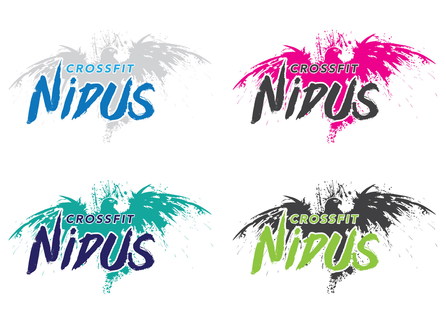 My Name is Dan Logo Design for Crossfit Nidus