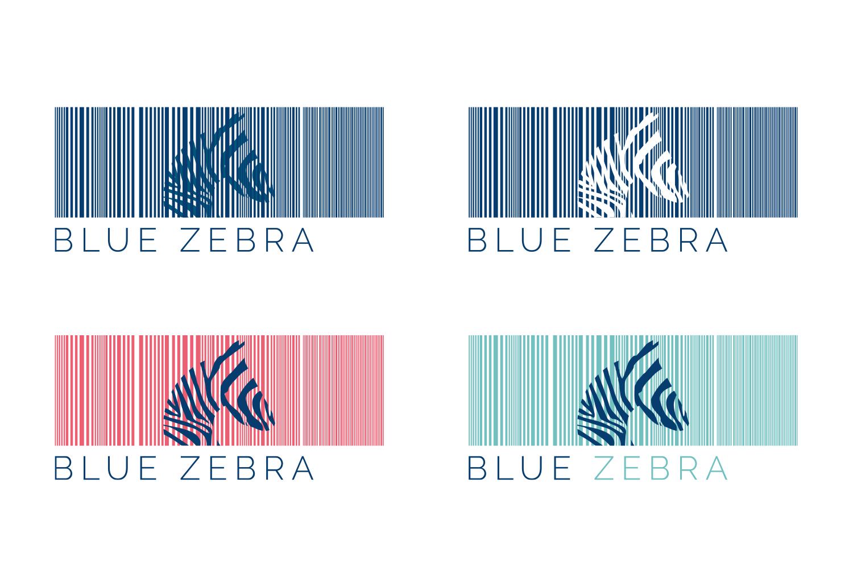 BlueZebra Logo Concepts from Presentation