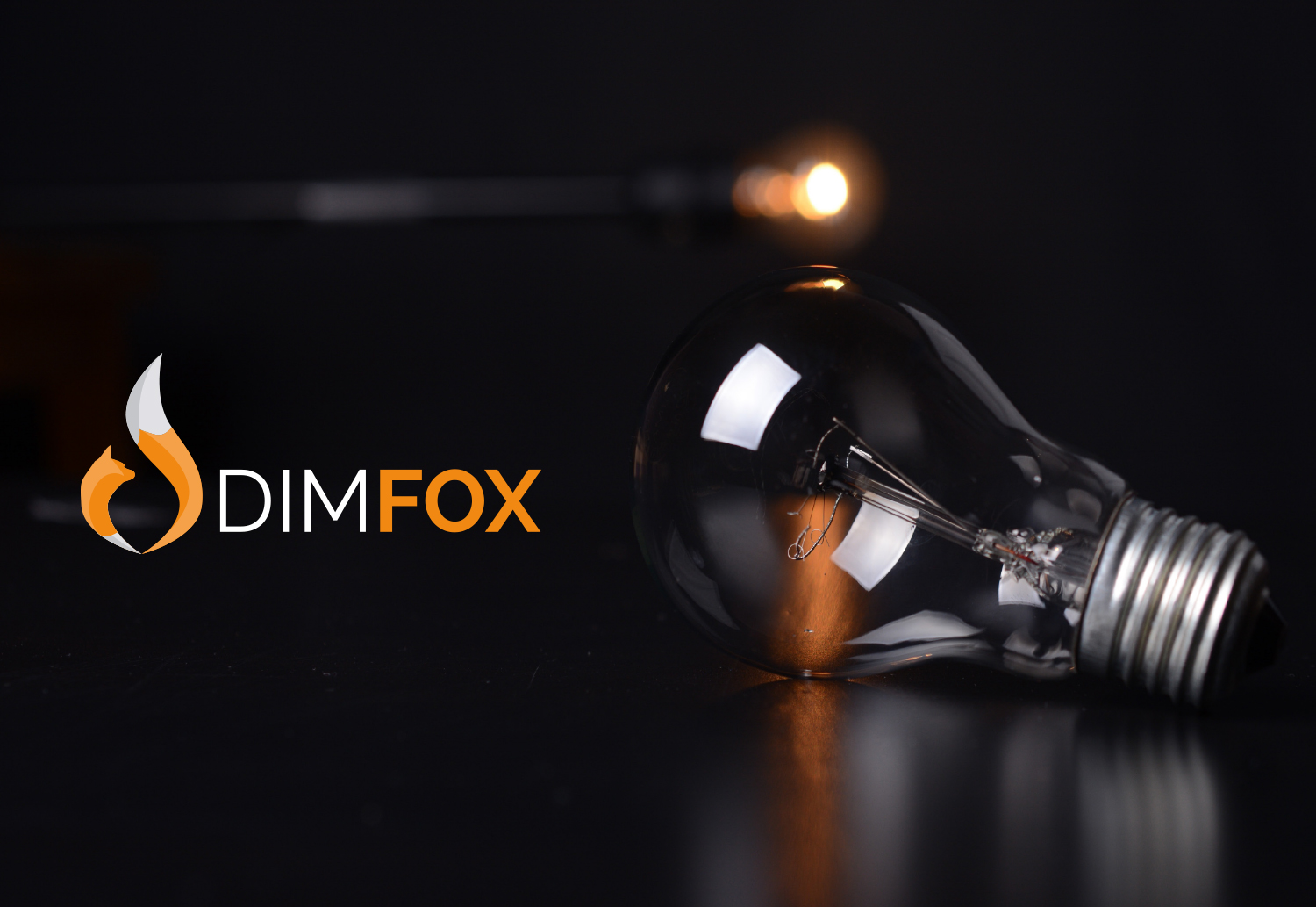 DIMFOX Logo Design -  Unused Concept Brand Application