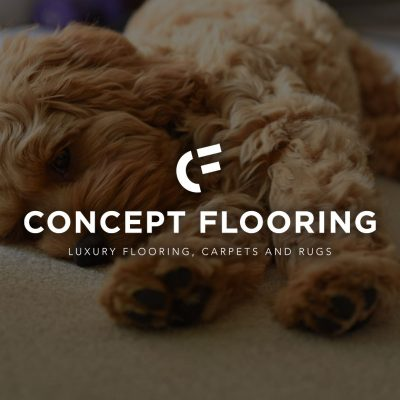 Logo and Leaflet Design for Concept Flooring | My Name is Dan