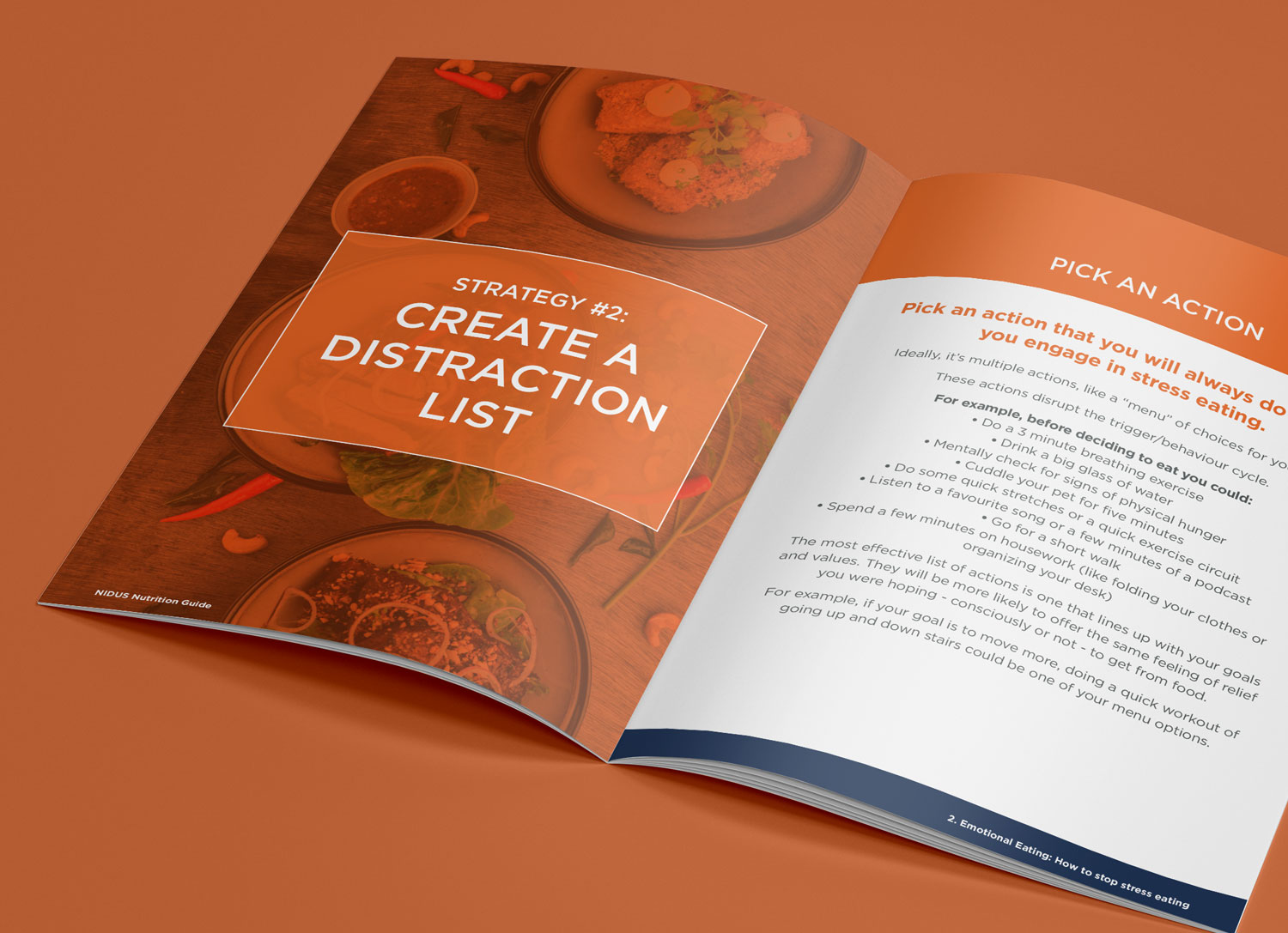 Nidus Rebrand - Nutrition Learning Guides - by My Name is Dan