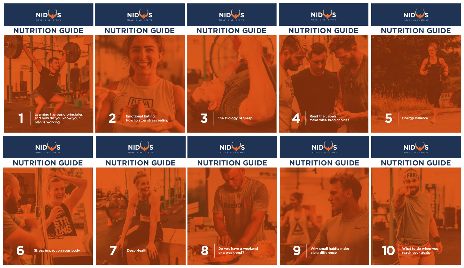 Nidus Rebrand - Nutrition Learning Guides Full Set - by My Name is Dan